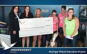 MichiganPitBullEducationProject